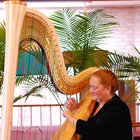 Professional Harpist and music educator with 40 years of experience gives Harp lessons, Flute lessons and music theory lessons at home.