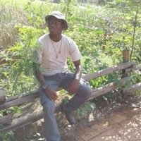 Agricultural graduate teaching gardening small and large scale from South Africa Mpumalanga
