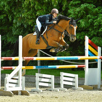 Experienced amateur showjumper, currently studying at University of Southampton, teaching all levels.
