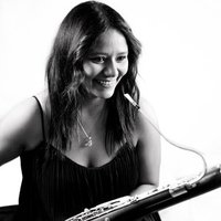 Experienced phagiston teaches private lessons of bassoon and solfeo at all levels in Murcia.