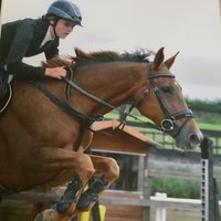 Experienced,  Show jumper in Exeter looking to tutor at all/any levels!