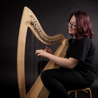 Folk harp maker and teacher offering accessible beginners harp lessons around Hungerford