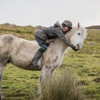Force free, science based horse and human coaching. I am a qualified positive reinforcement coach and i work online and in person to help you build the foundations and skills for everything from basic