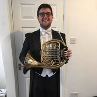Freelance pro musician offering French horn and brass lessons, as well as music theory and music reading!