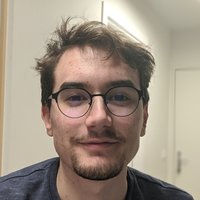 French engineering student (in exchange) willing to give lessons or help with projects in various programming languages (Python, C#, Java, C) in Oxford