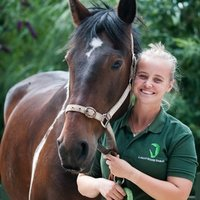 Horse riding instructor in Portsmouth - Teaches children and adults of all abilities and ages!