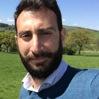 Italian native offering private or group Italian language lessons in Manchester area.