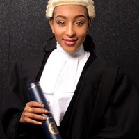 A legal professional providing excellent criminal law lessons to students and others.