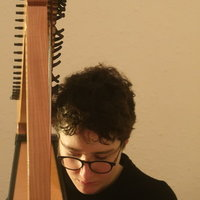 Music tutor specialising in lever harp, music theory and other stringed instruments