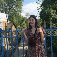 Hi my name is Rhiannon and I have just finished my GCSES, retaining two 9's in English literature and language and now studying English literature at A level. Would love to tutor you in any GCSE Engli