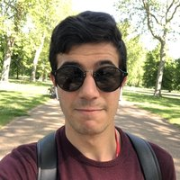 PhD student in Artifical Intelligence for Medical Imaging, offering Computer Science (Python), and Mathematics lessons up to university level