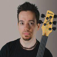 Professional bass player with 20 years' playing experience, and 8 years' teaching experience, offering expert tuition in bass guitar, music theory, guitar and Chapman Stick.