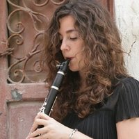 Professional Concert Clarinettist - Teaches Clarinet and beginner Saxophone and Music Theory.