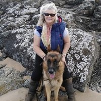 Professional dog training instructor ( Lothian & Borders) here to solve issues and take your dogs training to a different level