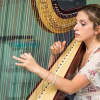 Professional harp tutor for Celtic harp and full size . Teaching all levels ,from beginner to advanced. Holding three master degree with specialization in harp solo performance and orchestra