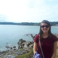 Professional musician offering online violin and piano lessons to students of any age and ability