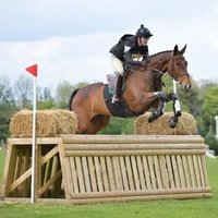 Professional rider based in Gloucester with BHS Stage 3 and gaining a degree in Equine Sports Coaching