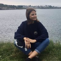 Second year marine biology student at the University of Exeter offering tutoring in the English language up to university level