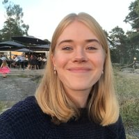 UCL student and future teacher with wide experience in education offering Swedish lessons